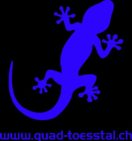 Quad Toesstal